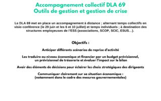 Accompagnement collectif DLA 69: Outils de gestion et gestion de crise